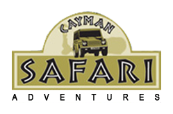 Cayman Safari